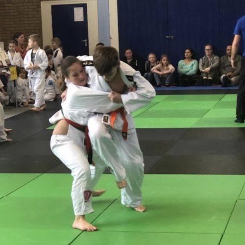 Judo - Bushido