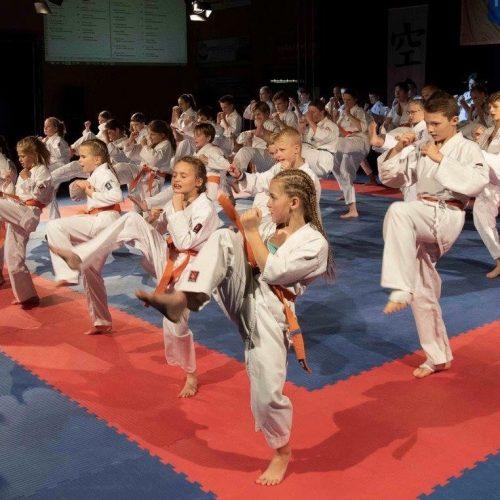 Kyokushin karate - Dojo Katsu